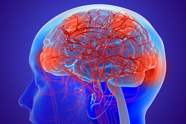 Nhóm nghiên cứu Hàn Quốc xác định được con đường dịch tủy não thoát ra ngoài