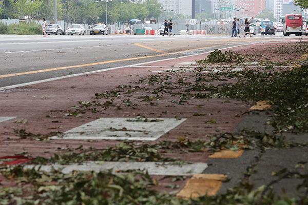 إعصار لينغ لينغ يسفر عن مصرع وإصابة 27 شخصا في كوريا