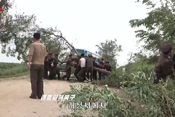 El tifón Lingling deja al menos 5 muertos en Corea del Norte