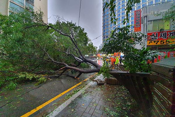 El tifón Tapah deja decenas de heridos