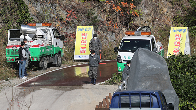 S. Korea Sets up Barbed Wires in Border Areas to Block Spread of ASF