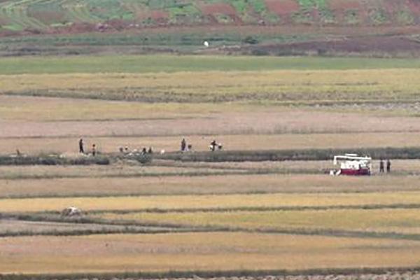 КНДР наращивает импорт зерновых из Китая