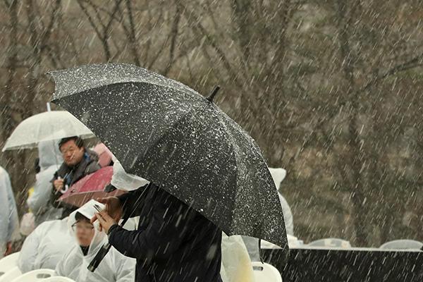 В Сеуле пошёл первый в этом сезоне снег