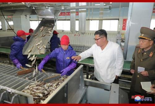 Kim Jong-un Inspects Fishery Stations
