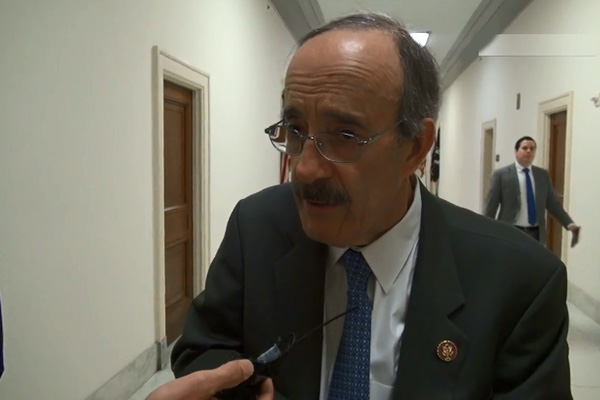 US House Committee Chief: Allies Cannot Afford to Fight with Each Other