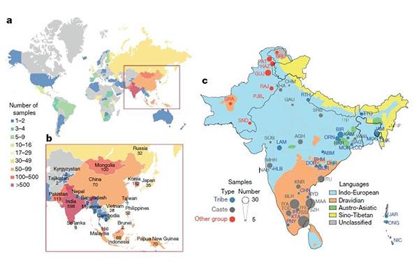 韩国主导国际研究组公开亚洲最广范围遗传基因信息