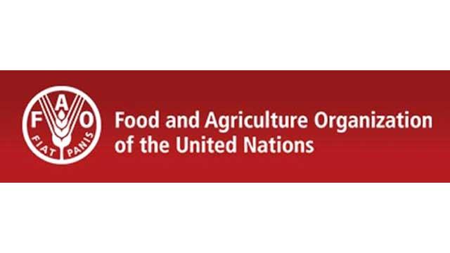 유엔, 북한 식량안보 '고위험국'→'감시국' 하향조정