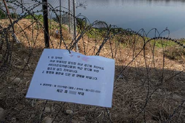 S. Korea Confirms 115th Case of African Swine Fever