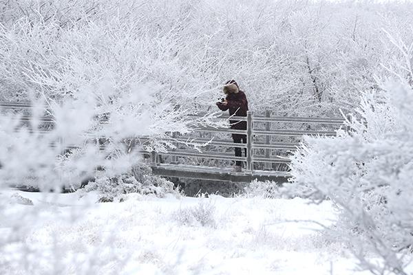 На юге Корейского полуострова выпал снег