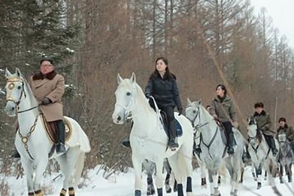 Pyongyang importó 12 caballos de Rusia, según Reuters