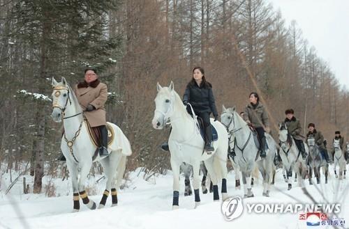 Nordkorea soll für 75.000 Dollar Pferde aus Russland importiert haben