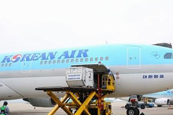 الجالية الكورية في الإمارات تجري مسحا بشأن استئجار طائرة إلى البلاد