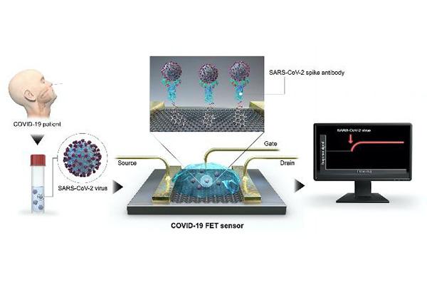 Biosensor für sofortige Feststellung von Corona-Infektion entwickelt