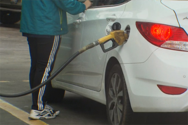Gas Prices Remain Steady After Four Months of Decline