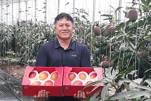亜熱帯作物の栽培が急増 国内需要も増加