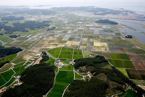 50年间韩国国土面积增幅为汝矣岛的821倍