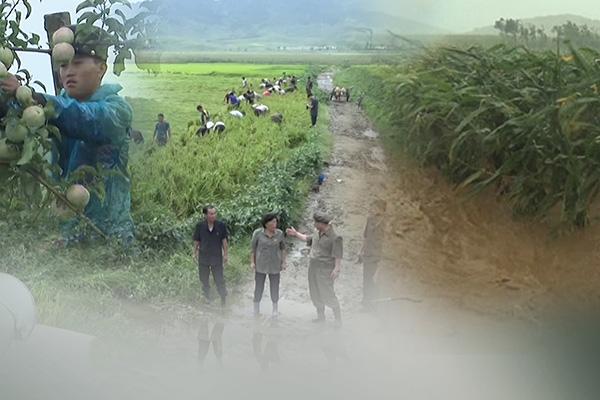 Gần một nửa dân số Bắc Triều Tiên suy dinh dưỡng