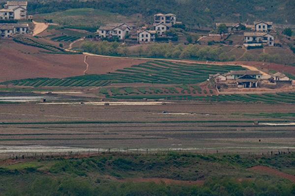 北韓 4月のロシアからの穀物輸入額740万ドル 去年の3倍