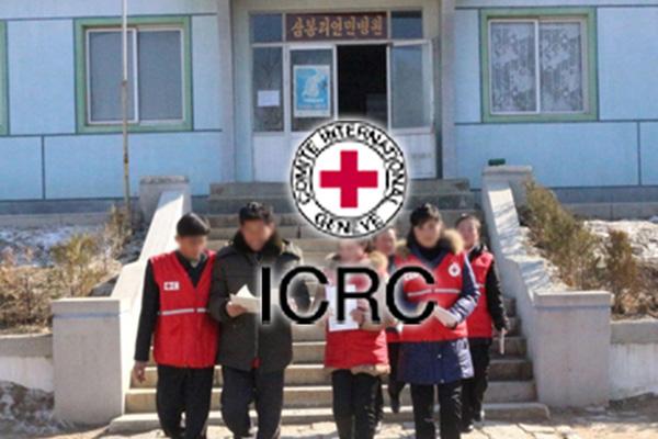 """적십자연맹 """"코로나 진단키트 1만개·마스크 4천개 북한 도착"""""""