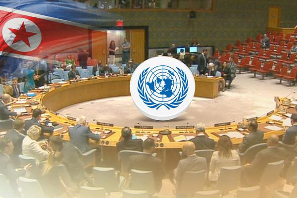 СБ ООН временно освободил от санкций проект гуманитарной помощи Северу