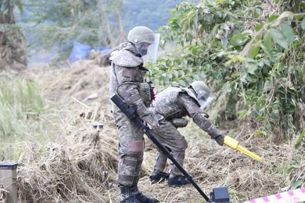 軍事境界線近くの地域で地雷が次々と発見 大雨の影響で