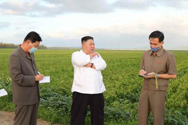 Chủ tịch Kim Jong-un thị sát các khu vực thiệt hại do bão Bavi