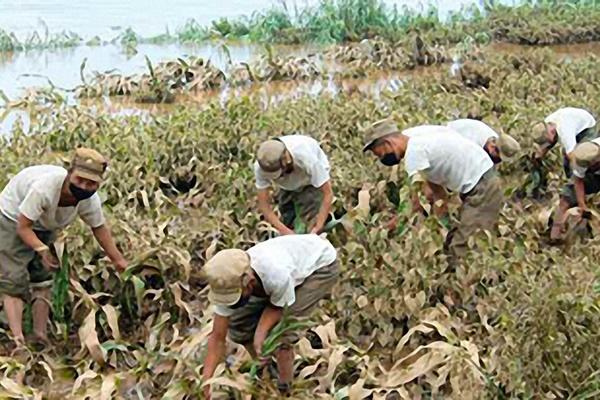 """북한, 농작물 피해 줄이는데 사활…""""자력부강 위한 절실한 요구"""""""