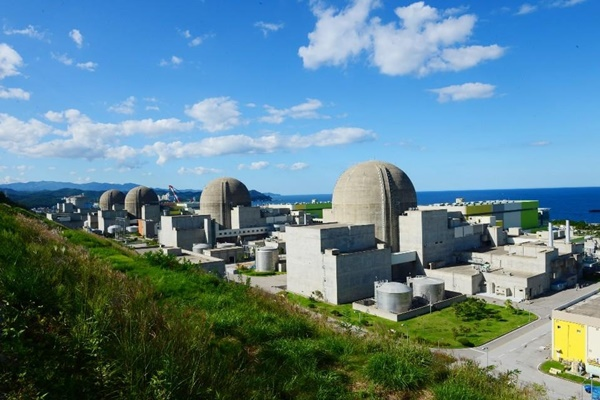 Zwei Reaktoren erneut wegen Meerestieren gestoppt