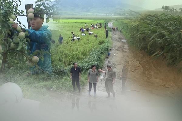 """북한, 세계식량의날 기아 위기 언급…""""국제사회와 협력하겠다"""""""