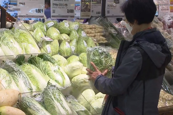 Giá cải thảo ổn định trước mùa muối kimchi