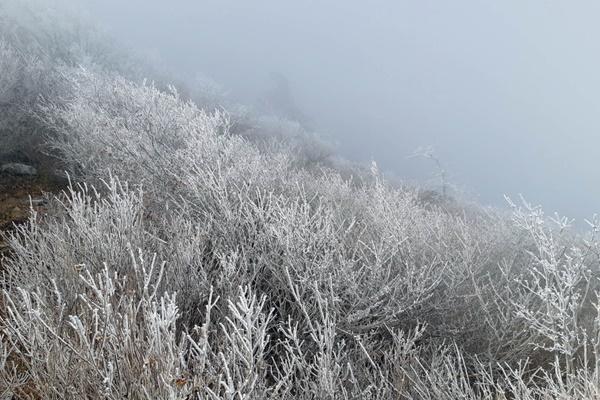 Embun Es Pertama Turun di Taman Nasional Gunung Jirisan