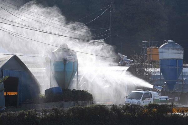Hàn Quốc nâng cảnh báo dịch cúm gia cầm lên mức cao nhất
