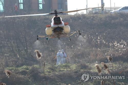 S. Korea Raises AI Alert, Quarantine Measures after Reporting Case at Duck Farm