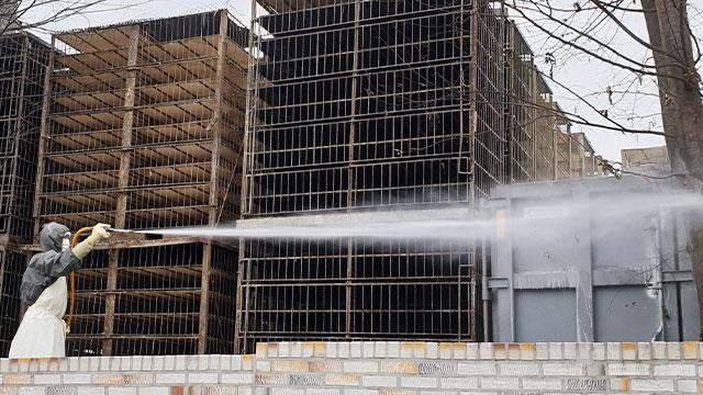 S. Korea Reports Bird Flu Case at Slaughterhouse in Naju