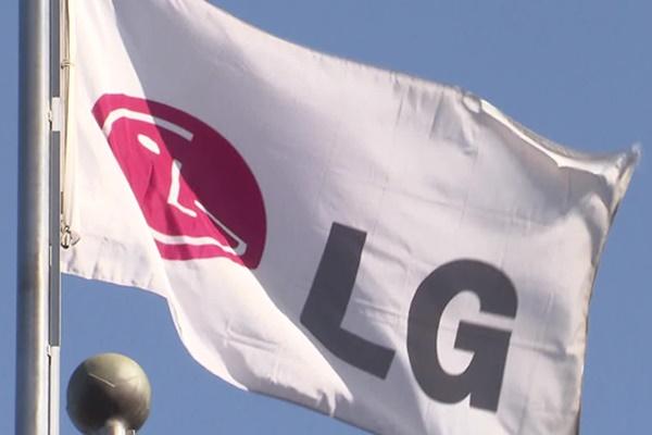 """미국 행동주의 펀드 """"LG 계열 분리 계획 반대"""""""