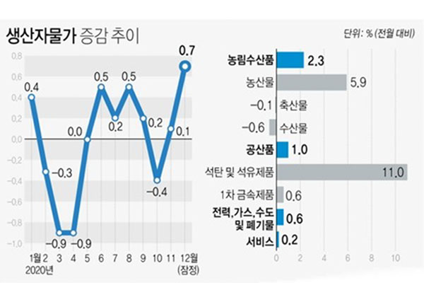 S. Korea's Producer Prices Rise 0.7% in December