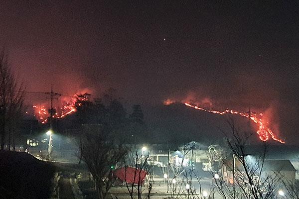 اندلاع سلسلة من حرائق الغابات في كوريا