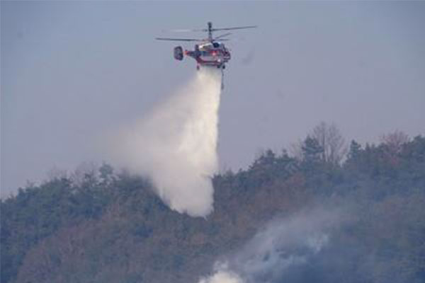 乾燥注意報中に強風吹き荒れる 安東・醴泉で山火事