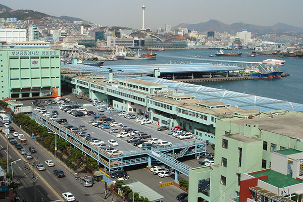 عدوى جماعية بفيروس كورونا في أكبر سوق للأسماك في كوريا