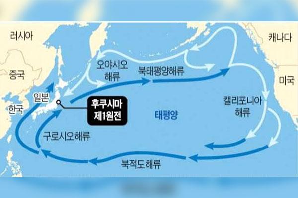 Fukushima : le Service de recherche du Parlement évoque un risque de pollution en mer de l'Est