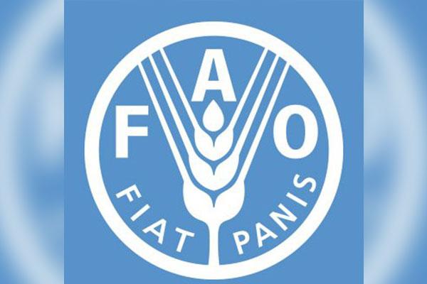 La Corée du Sud réélue membre du conseil de la FAO