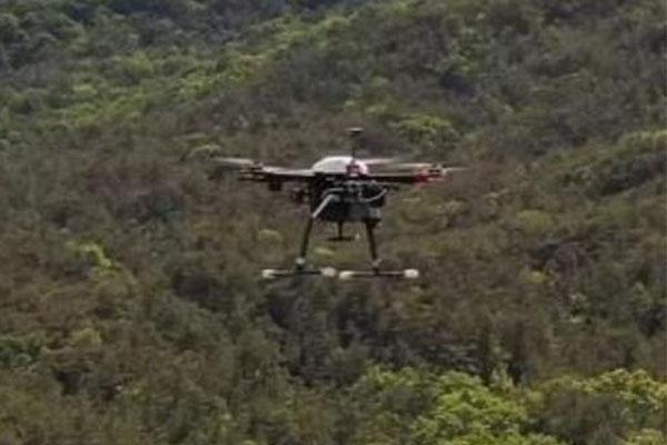 В РК создан дрон, выявляющий лесные пожары