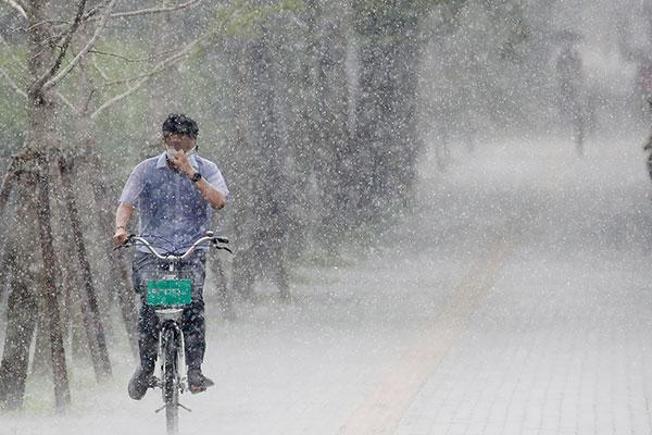 KMA Issues Heavy Rain Warnings for Seoul, Maintains Heat Wave Advisories