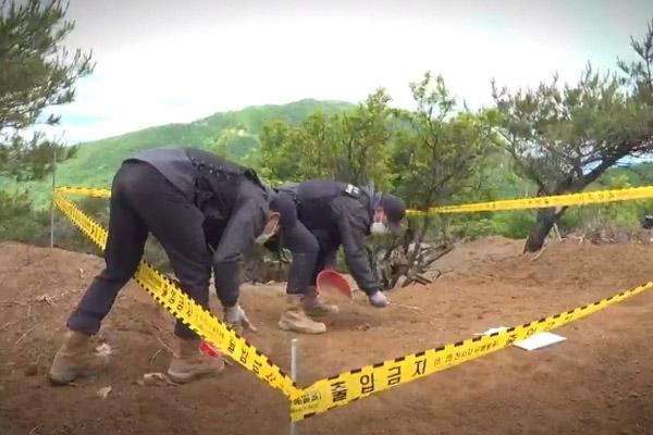 РК и США возобновили совместные поиски останков погибших в Корейской войне