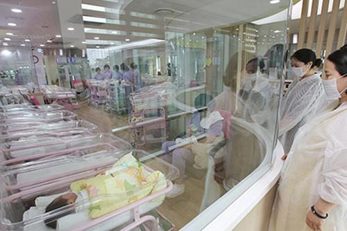 Hàn Quốc hạ tiêu chuẩn công nhận gia đình đông con thành hai con