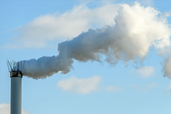 Carbon Neutrality Committee Finalizes Two Roadmaps