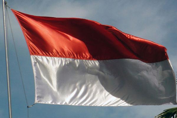 Pourquoi l'Indonésie est-elle à l'abri du nouveau coronavirus ?