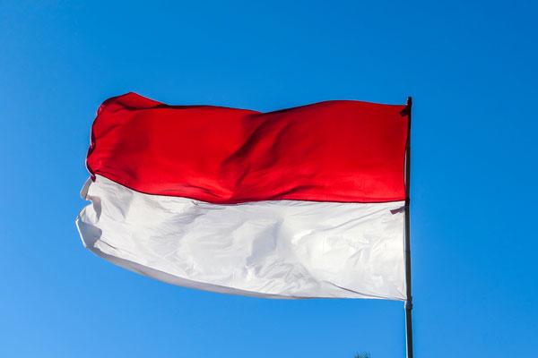 COVID-19 : une ville indonésienne est surveillée par un gardien fantôme
