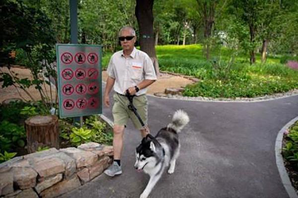 China: Kreis Weixin in Yunnan setzt nach Kritik Ausführverbot von Hunden aus