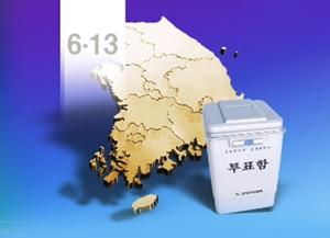 6·13地方选举的政党候选人得票率
